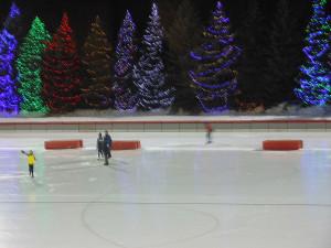 Skating Center 3078