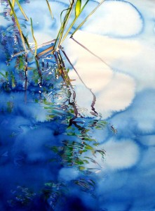 Carol Carter pond